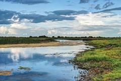 Shannon river 13982298_xxl