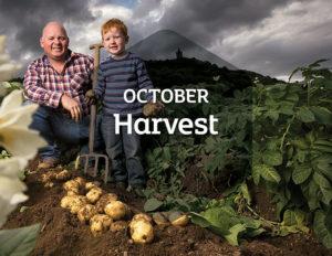 29359_October-Harvest