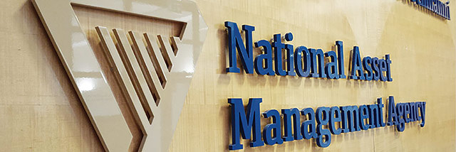 National Asset Management Agency (NAMA)